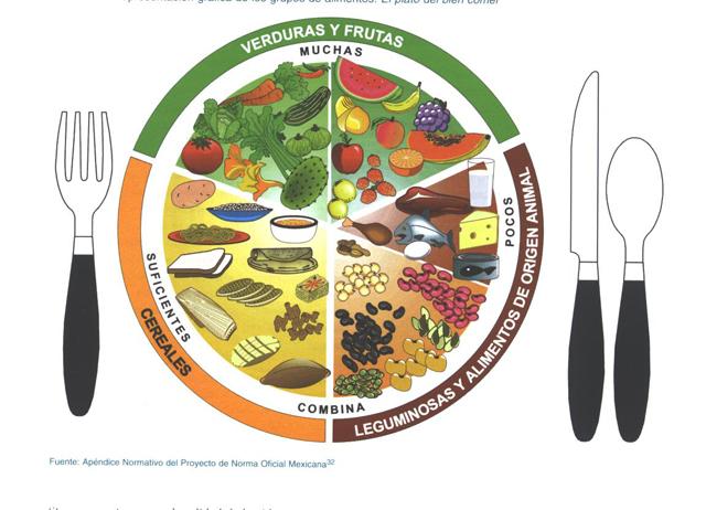 Alimentos para combatir la obesidad y la celulitis