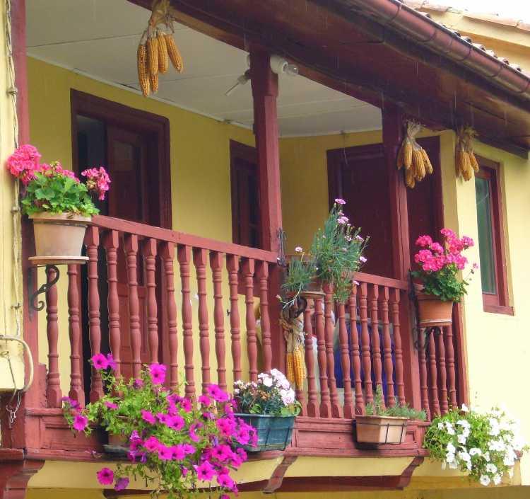 Plantas en el balc n - Plantas de balcon ...