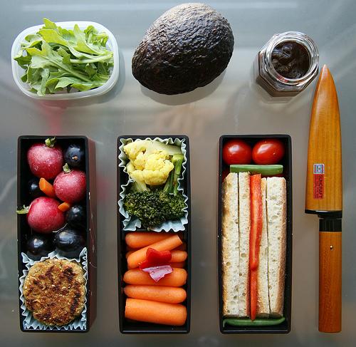 Dieta del Dr. Haas