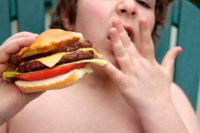 Obesidad y dietas