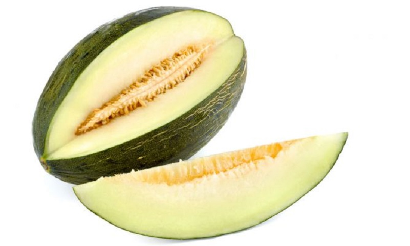 Beneficios del melón en tu dieta