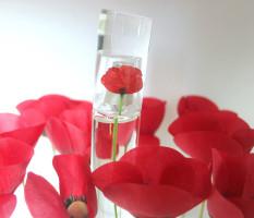 flower_kenzo