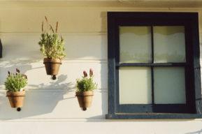 Cómo elegir las cortinas de la casa