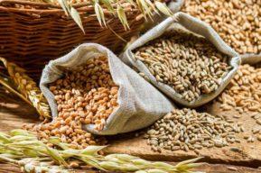La importancia de las fibras alimenticias
