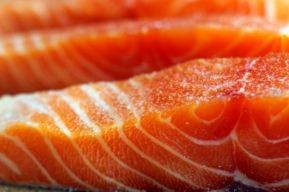 ¿Por qué debemos comer mayor cantidad de salmón?