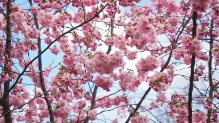 Diez consejos de autoestima para esta primavera
