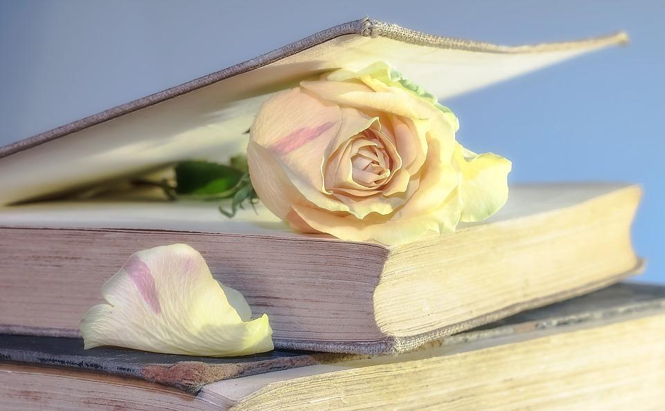 Libro entreabierto