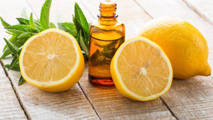 Aceites esenciales: Adelgazar con una ayuda natural