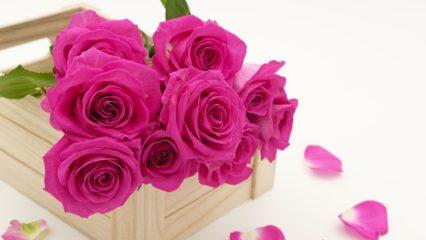 Cómo elegir tu regalo para el Día de la Madre