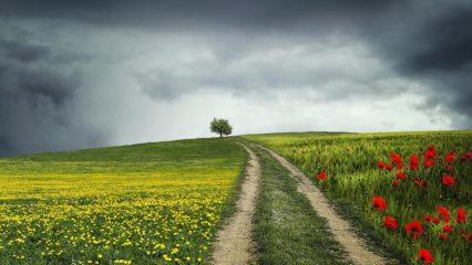 10 consejos de crecimiento personal
