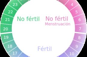 ¿Qué debo saber sobre la píldora anticonceptiva de emergencia?